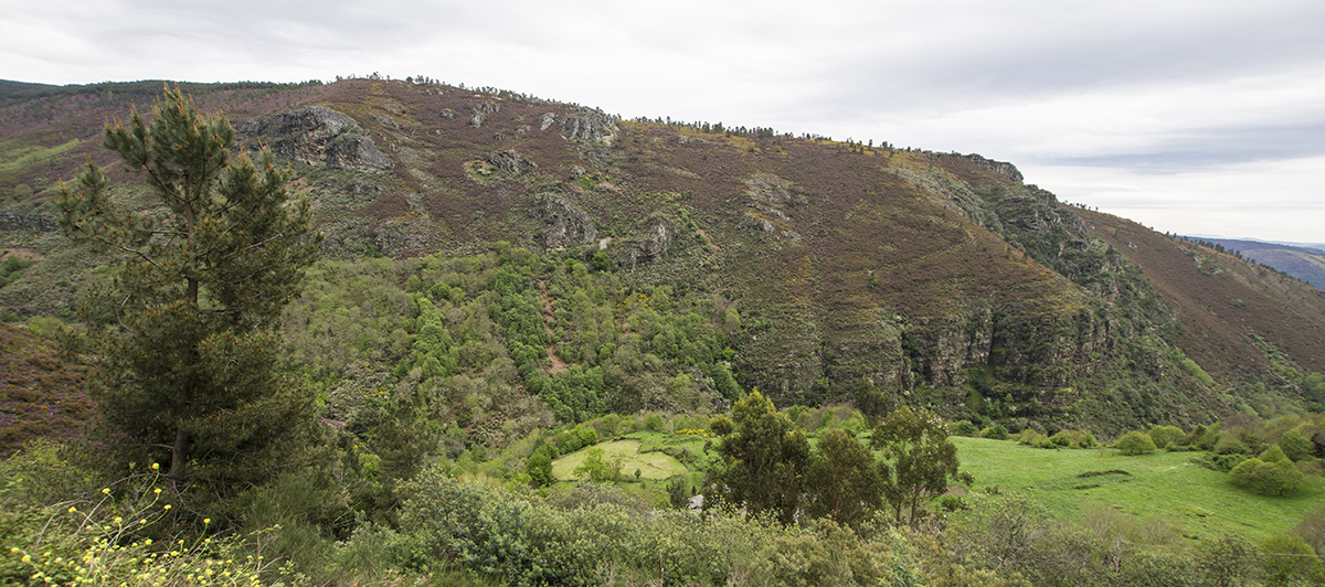 Sinclinal de la Serra do Caurel