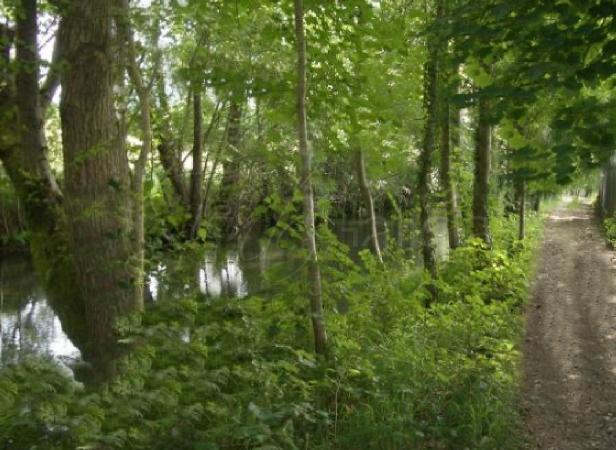 Ruta del Paseo fluvial