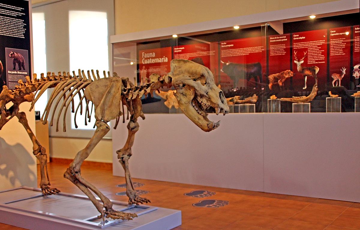 Museo xeolóxico municipal do Concello de Quiroga